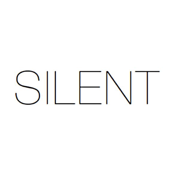 Silent Models New York