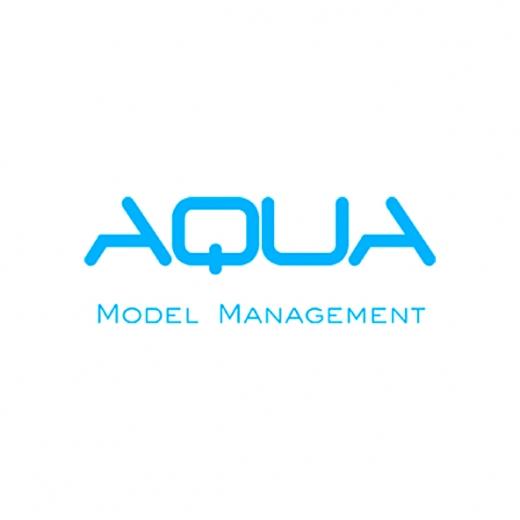 Aqua Models ▪ Aqua Model Management