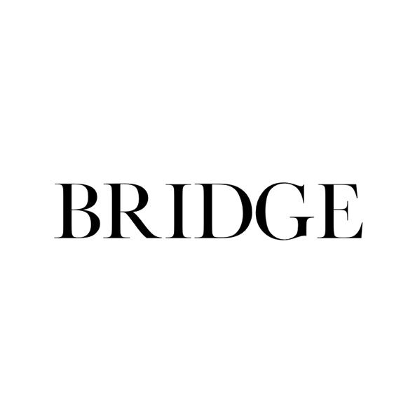 Bridge Models